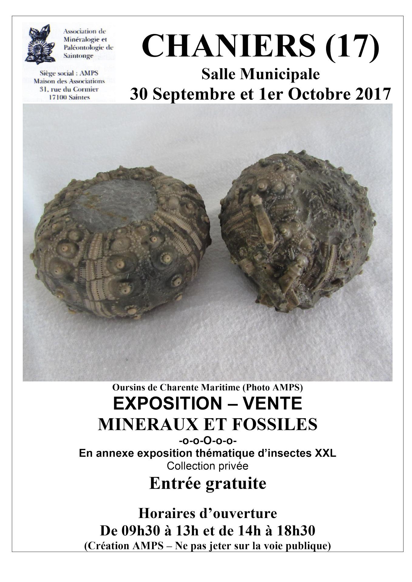 Exposition-Vente de Minéraux et Fossiles @ Salle des fêtes | Chaniers | Nouvelle-Aquitaine | France