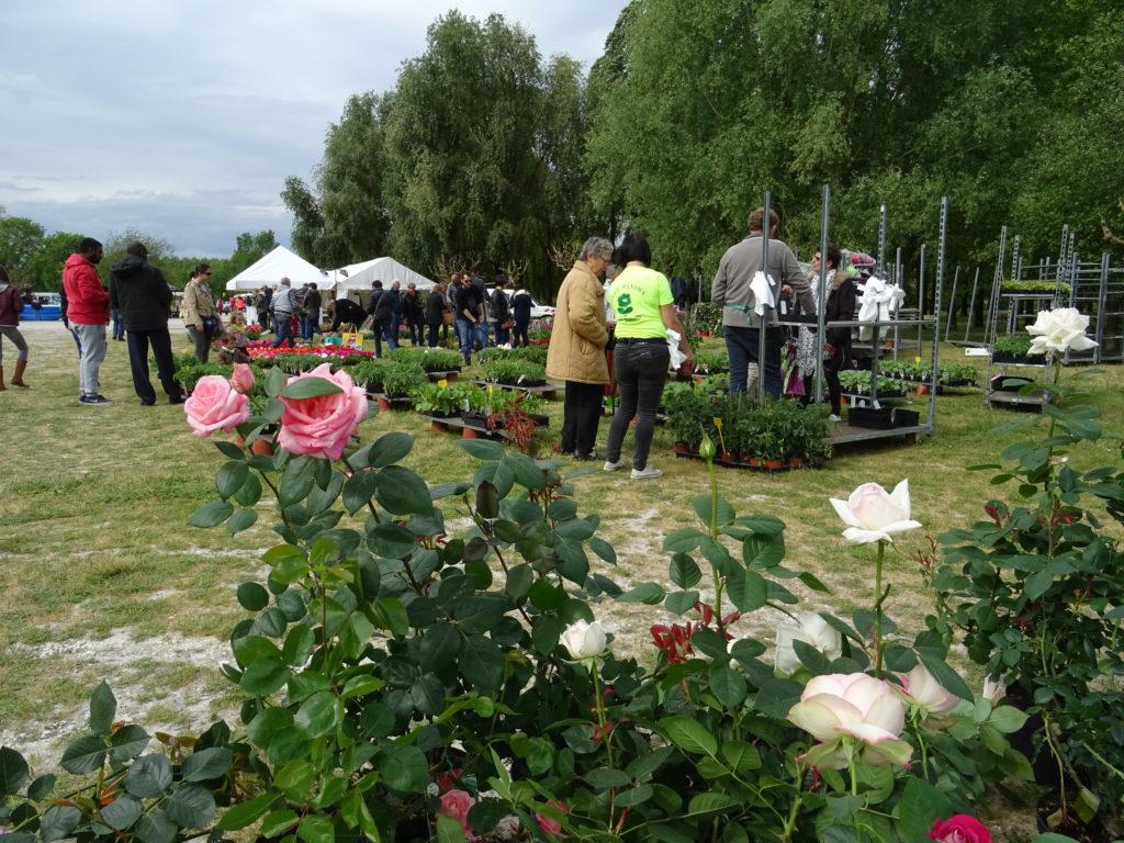 Chaniers fête les Jardins @ Communal | Chaniers | Nouvelle-Aquitaine | France