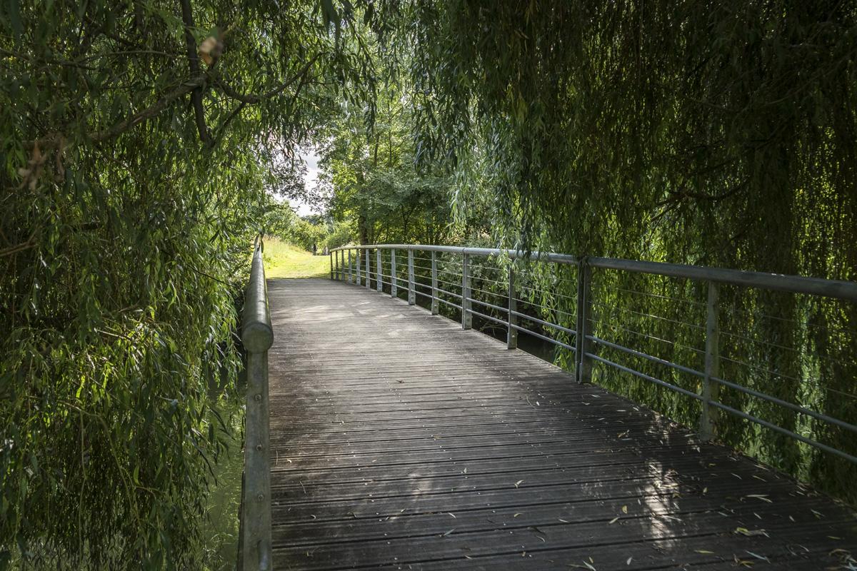 Passerelle sur la Charente à Chaniers (17)