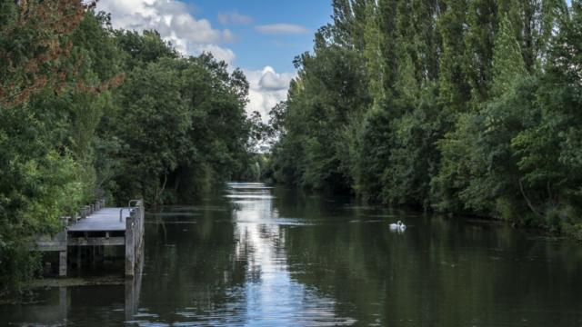 La Charente à Chaniers (17)