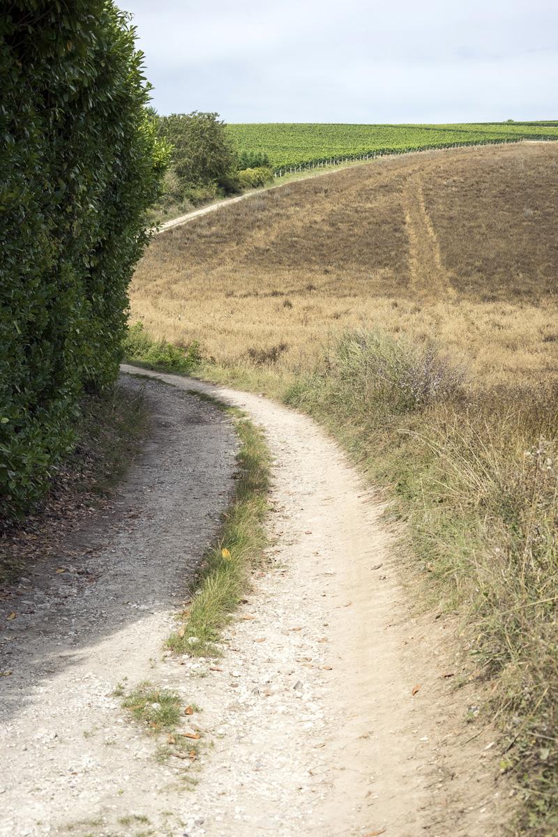 Itinéraire de randonnée à Chaniers (17)